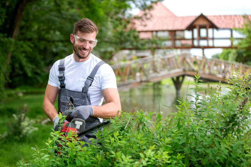 jardinage domicile adclic services
