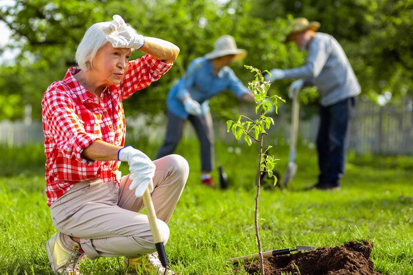 jardinage espaces verts