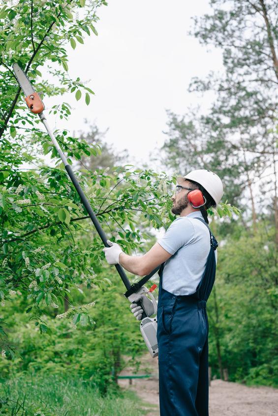 jardinier entretien espaces verts
